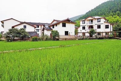 本报记者 郑和顺 摄   初夏时节,新雨过后,走进大盛镇天险洞村,远山