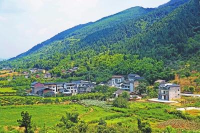 天仙谷风景区内有万亩原始森林,有原生态樱花8000余亩,楠木2000余亩,2